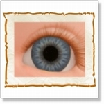 7505 - Eyes :  HQ Acryl Eyes Victorian Blue