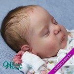 AW300314 - Dollkit 17  - Nevaeh - Limited Edition