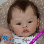 AW300326 - Dollkit 17 - Meadow - Limited edition - € 104,90 - Pre Order